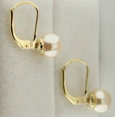 Yellow gold earrings set with a 6 mm pearl.