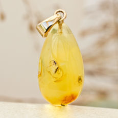 Unique gold and Baltic amber pendant with four fossil insects
