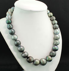 Magnificent Tahitian pearl necklace (string) from 12 to 16.1 mm, multi-colour --- No reserve price! ---