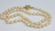 Women's necklace of 6 mm saltwater pearls with a yellow gold clasp charm.