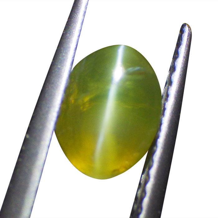 Cat's Eye Chrysoberyl - 1.75 ct