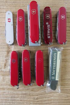 A Collection of 9 Victorinox Pocket knives