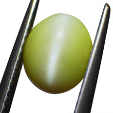 Cat's Eye Chrysoberyl - 2.38 ct