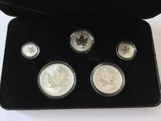 Canada: Maple Leaf Silver privy set 2004, Limited Edition 25,000 coins