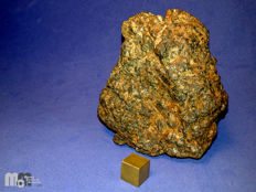 Diogenite meteorite - 7831 NWA - full specimen, 329 grams. Certified by MCM.