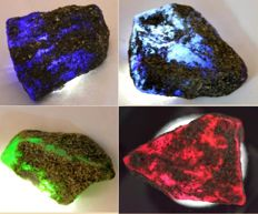 Two Sapphires, one Emerald, one Ruby - natural rough gemstones, 111.33 g - 556.65 ct (4)