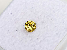 Yellow Diamond - VVS2 - Brilliant Cut - 0.19 ct - without reserve price