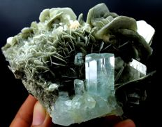 Terminated Aquamarine Crystal Cluster with Muscovite Mica - 100 x 83 x 50 mm - 380gm