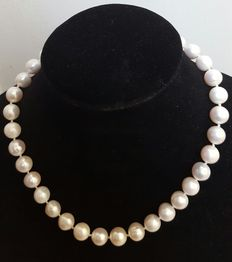 Necklace with big fresh water cultured pearls - 925 silver clasp
