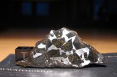 Admire Meteorite - Pallasite class (Stony-Iron, contains gemmy Olivines) - Full slice 8.8g