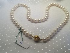 Necklace of Japanese cultured pearls