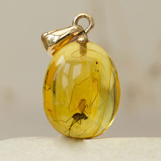 9K gold and Baltic amber pendant with fossil insect