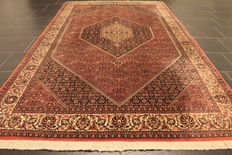 Magnificent, genuine, Persian carpet, Bidjar, best wool, 155 x 260 cm, made in Iran