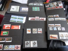 China 1962/1980 - Collection on stock-cards, mostly from incomplete sets.