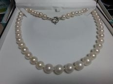 Necklace with Akoya cultured pearls and a 925/1,000 silver clasp.