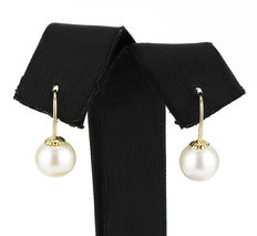 18 kt yellow gold earrings with freshwater cultured round pearls measuring 8.1 mm (approx.) – No reserve price
