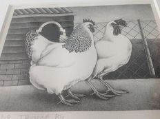 ERNO Tromp - Chicken and pig