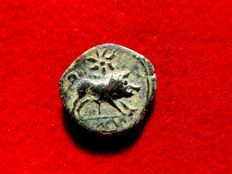 Ancient Hispania - Castulo bronze quadrans ( 3,16 g, 15 mm) minted in roman Hispania, Baetica provincia (actual Linares, Jaén) in the II century B.C. Diademed male bust / wildboar and star.
