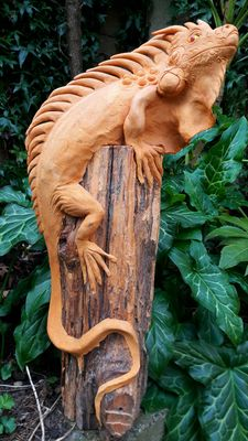 Large ochre iguana on a tree trunk - wood and resin - 54 cm.