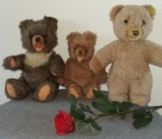 Lot of 3 bears 2 of them are Zotty/Zottel bears - Hermann, Clemens and one is a Steiff bear - Germany