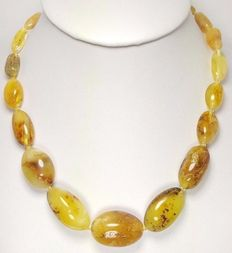 Baltic amber, 100% natural olive shaped beads, egg yolk and white, 31.2g, no reserve price