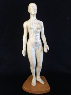 Acupuncture model [woman]