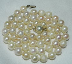 Pearl necklace made of Japanese Akoya salt water pearls, 6.6 mm diameter with 585 / 14 kt gold clasp,  42 cm