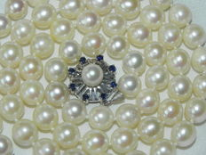 Pearl necklace made of Japanese Akoya salt water pearls of 7.7mm in diameter with a gold clasp and authentic sapphires