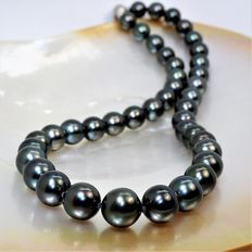 Round cultured Tahitian pearl necklace, Ø 9 x 11.1 mm - Magnetic polished 925 silver clasp