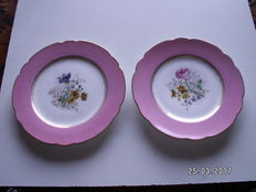 David Haviland, Limoges, porcelain plates