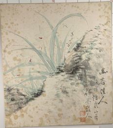 Orchid plant with flowers Shikishi signed by Chikutei – Japan - ca. 1910s