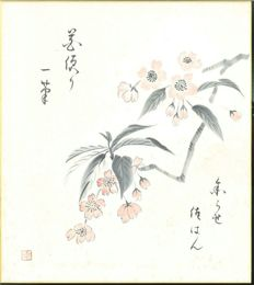 Shikishi painting, Cherry Blossom - Japan - mid. 20th century (mid Showa Period)