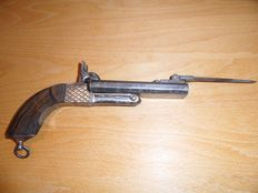 Gun with Bayonet