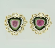 14 kt yellow gold ear studs set with watermelon tourmaline, measurements: 2 x 2 cm
