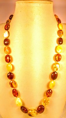 Genuine Baltic amber multicolour necklace, 36 grams