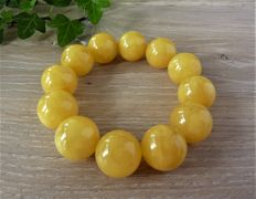 Baltic Amber bracelet in egg yolk colour 52,98 gr.