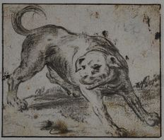 Cornelis Saftleven (c.1607-1681) -  Study of a vicious dog