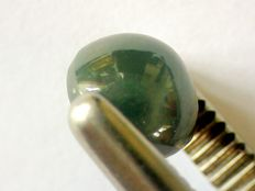 Alexandrite cat eye - 3.22ct