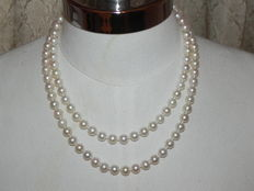 Pearl necklace made of Japanese Akoya salt water pearls Ø 7.8 - 8mm - 94cm