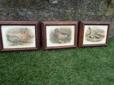 3 old frames with hunting bird.