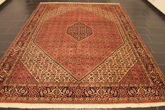 Magnificent, genuine Persian carpet Bidjar best wool, mint condition, 250 x 340cm, made in Iran circa 1990