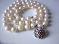 Akoya pearl necklace, clasp with rubies, made of 585 white gold!
