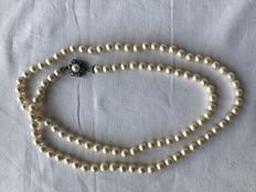 Long necklace with 104 Akoya pearls and white clasp set with diamonds and sapphires