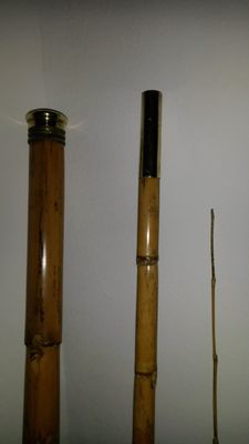 Very beautiful cane with so-called poacher system