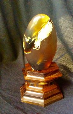 Sumatra Amber mystery cabochon on hand carved hardwood stand, 41.7 grams
