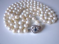 Akoya pearl necklace, very long clasp with sapphire and diamonds made of 585 white gold