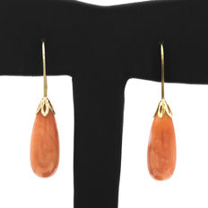 Yellow gold earrings with natural Pacific coral.