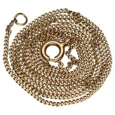 Yellow gold delicate curb link necklace of 14 kt