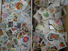 Flowers – Topical batch with over 10,000 stamps in a box