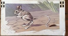 "Neave Parker (1910-1961) - Original illustration ""Jerboa"" - early 1950s"